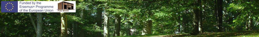 Pub-Wood